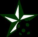 DLSFloorball_star