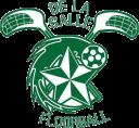 LSM_logo